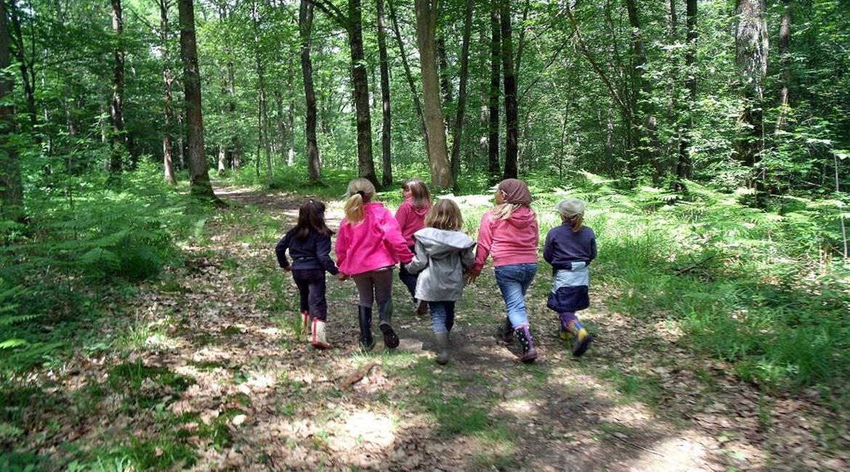 un chemin, une école en Hauts de France